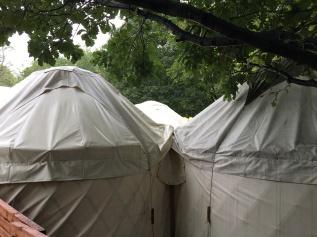 Author yurts EIBF 19 Aug 18