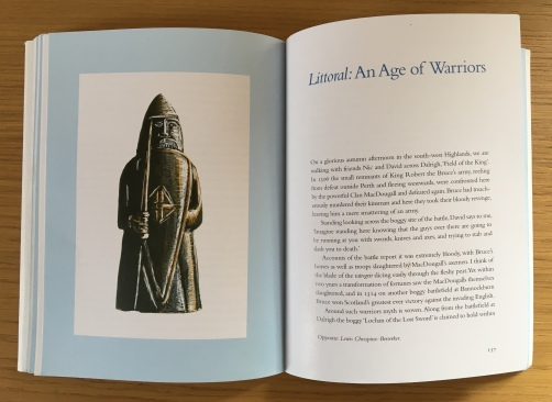 same Lewis chess piece illustration in 'Into the Peatlands'.